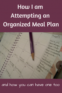 How I am attempting an organized meal plan
