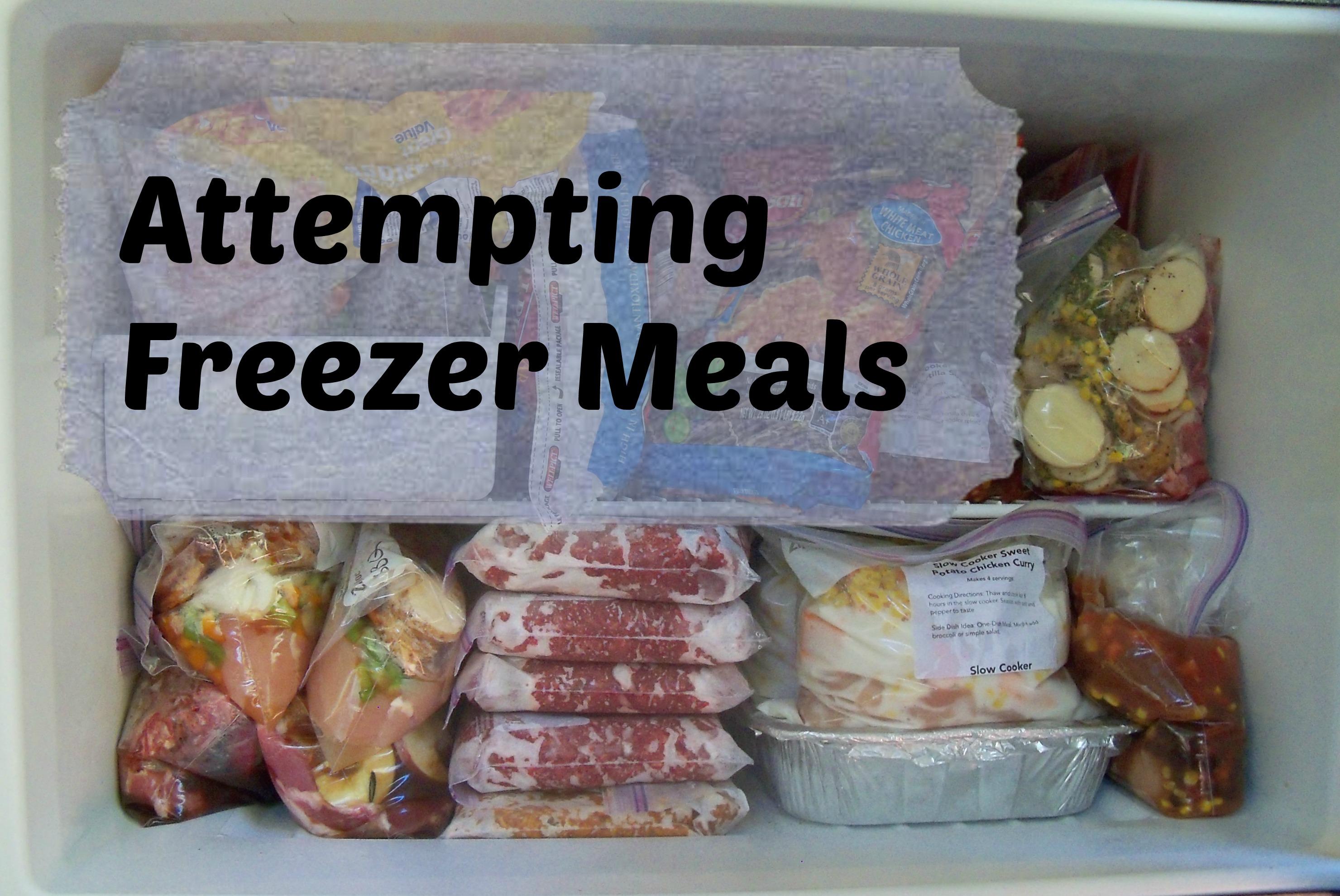 Attempting Freezer Meals