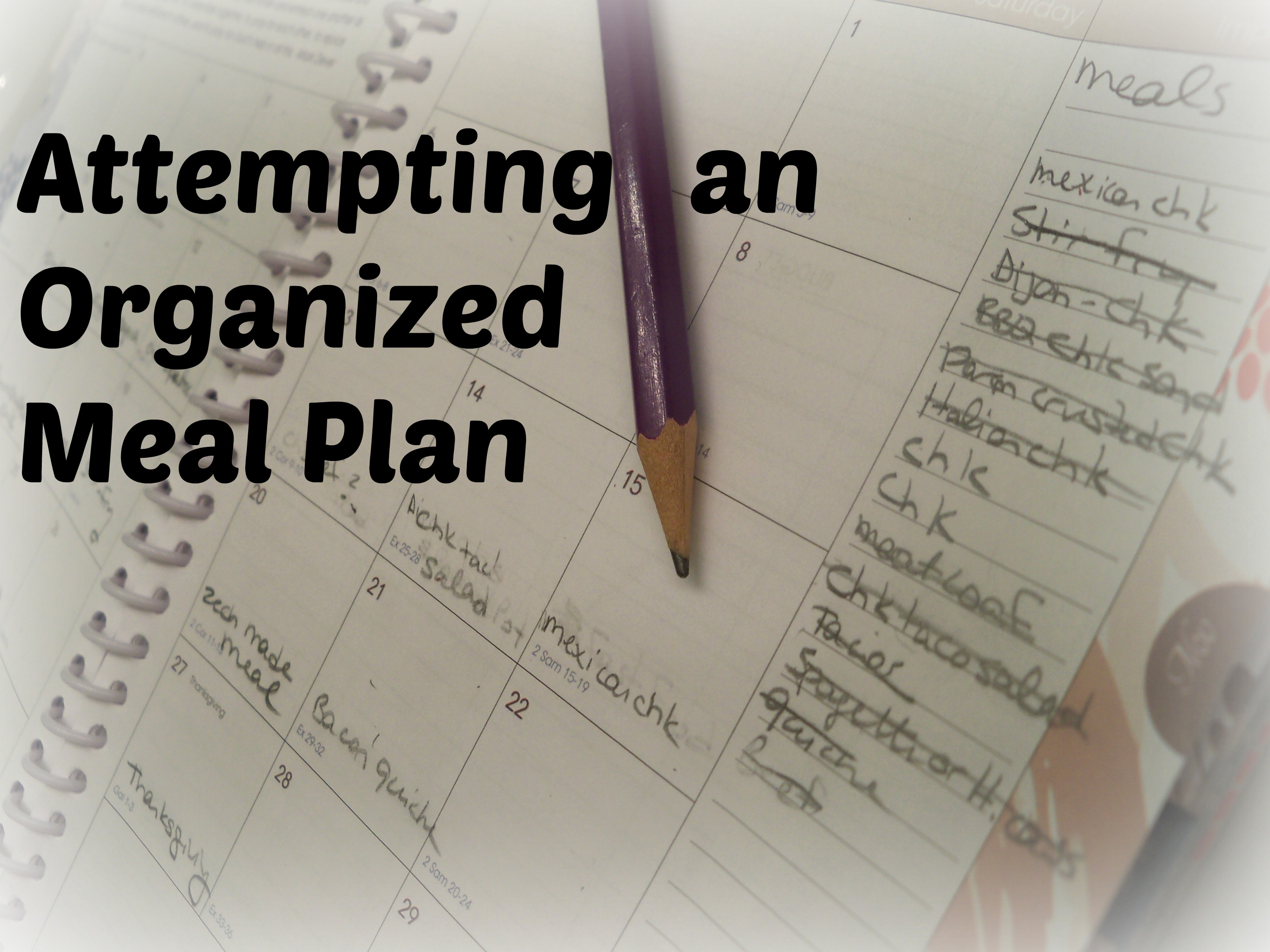 Attempting an Organized Meal Plan