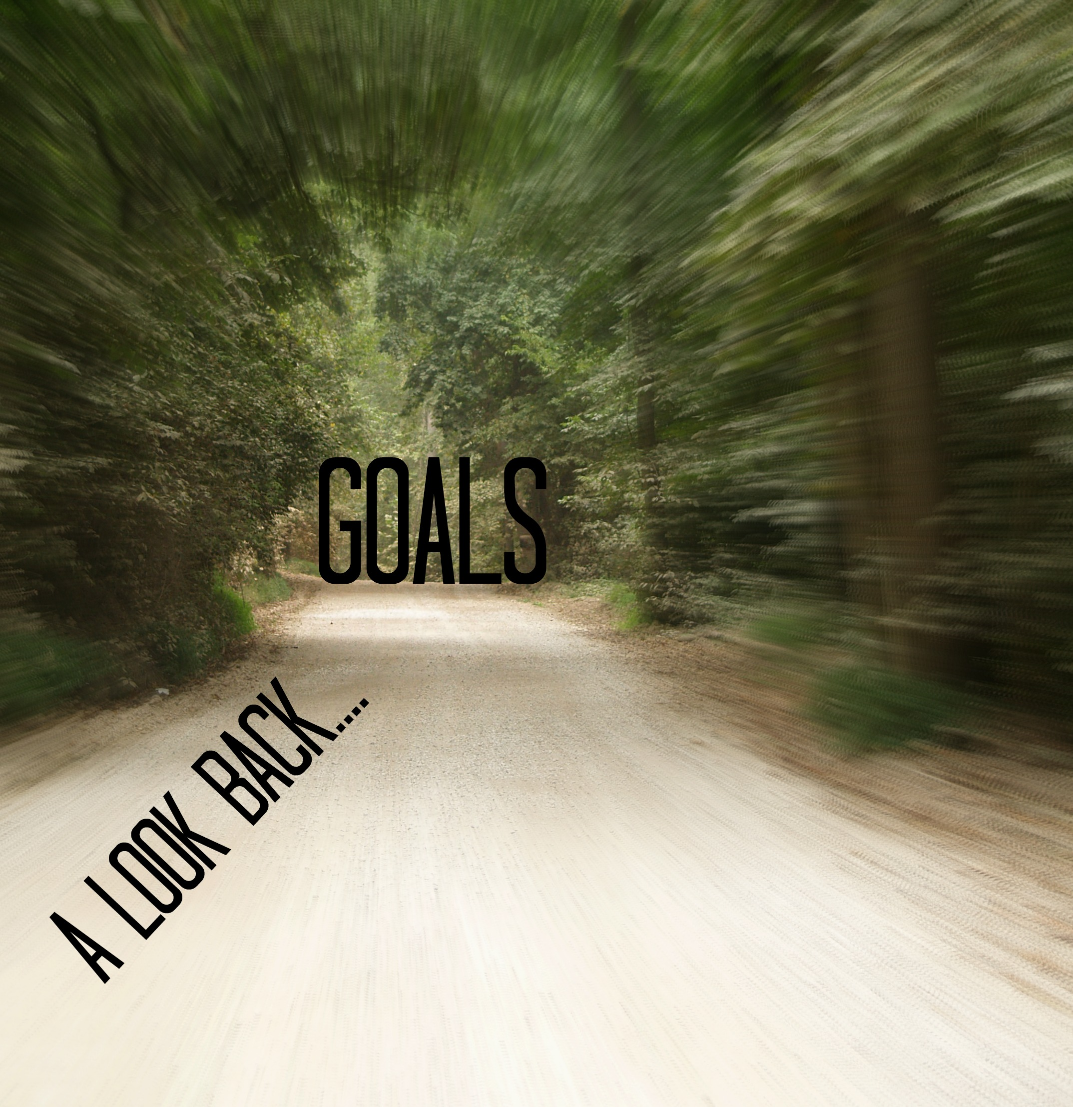 2014 Goals: My Triumphs and Failures
