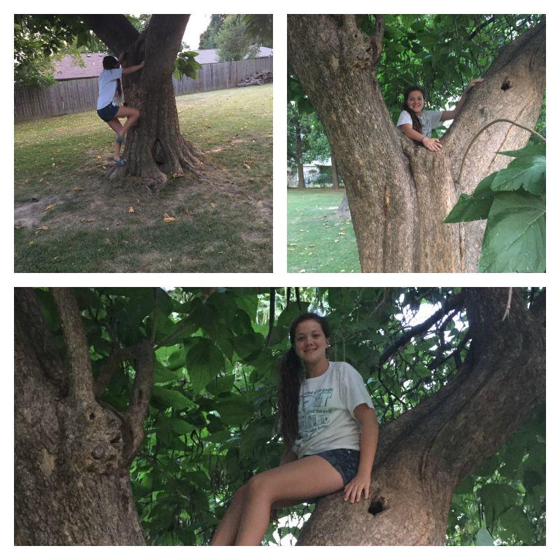 It didn't take Hadassah long to find a good climbing tree!