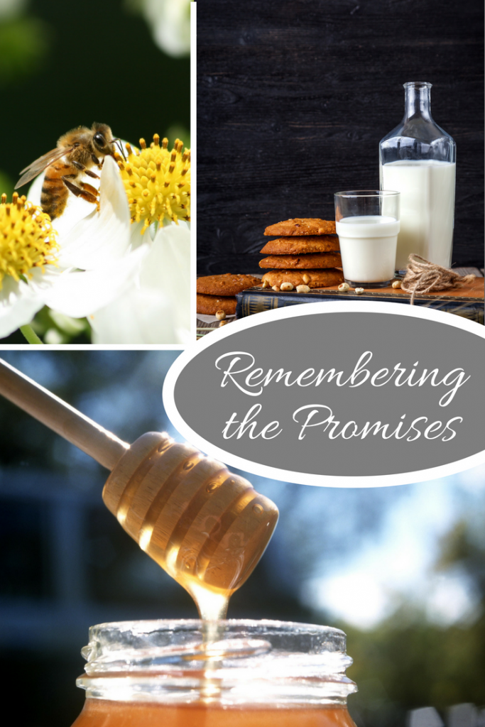 Remembering the promises