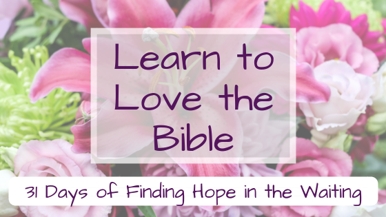 learn to love the bible