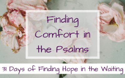 Finding Comfort in the Psalms