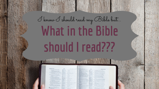 We get a fuller understanding of who God is and who we are in relation to Him through the entirety of His word. Reading the whole bible is imperative for Christian growth.